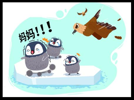 翅打海豹,智斗贼鸥,带你看不一样的帝企鹅!