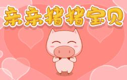 亲亲猪猪宝贝