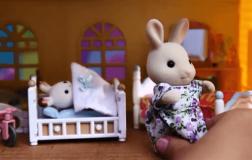 兔妈妈家着火了